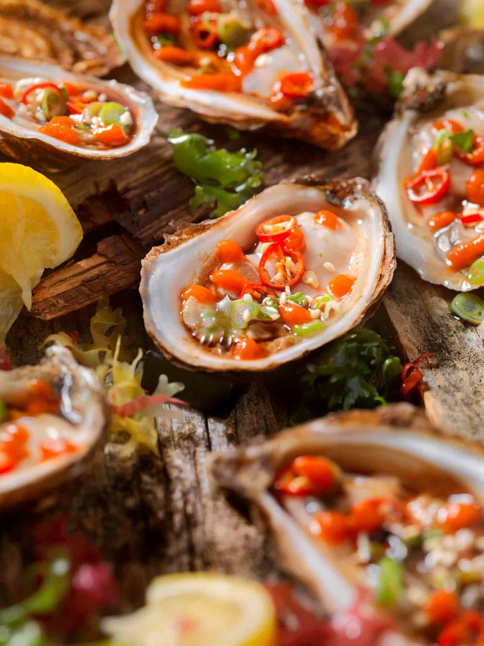 Calgary Food Photography. Close up of heavenly garnished oysters.