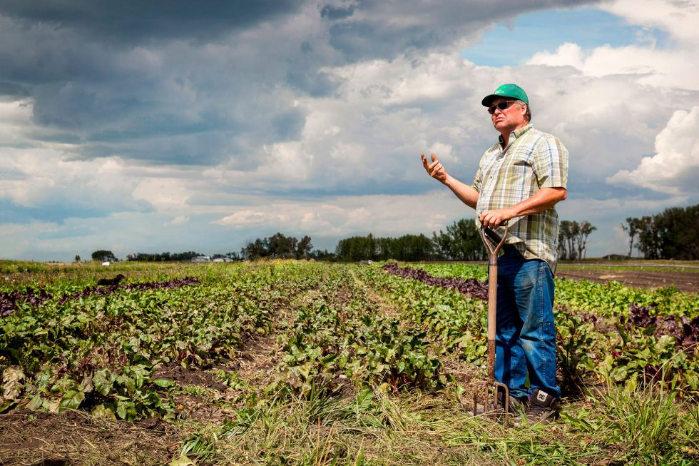 Calgary People Photographer. Frustrated gentleman in the field.